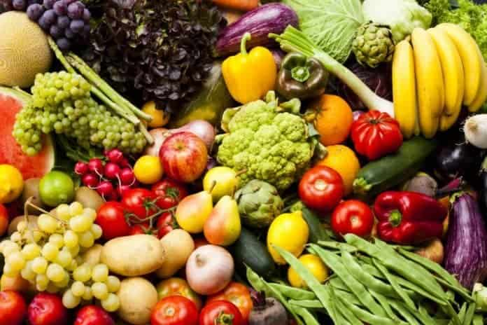 plantage based nutrition vegs