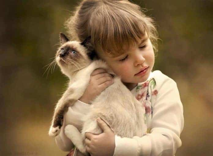 animals and children