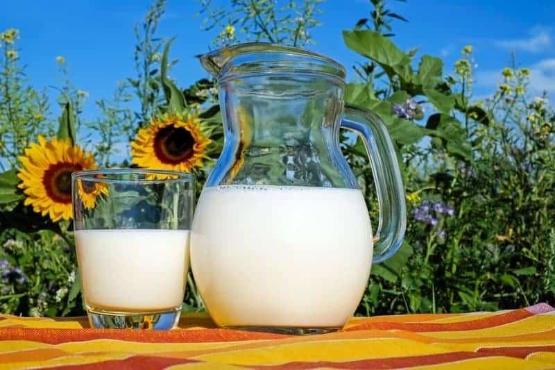 cruelty free milk